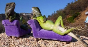 hollywood_lizards_web